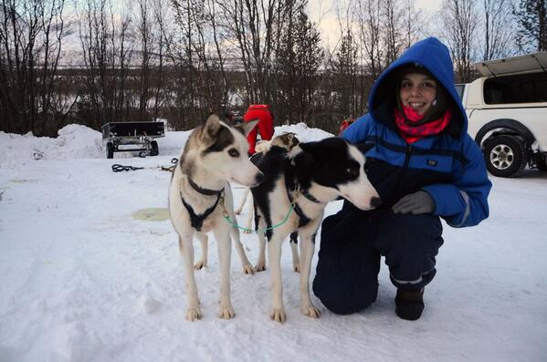 With husky dogs in Norway