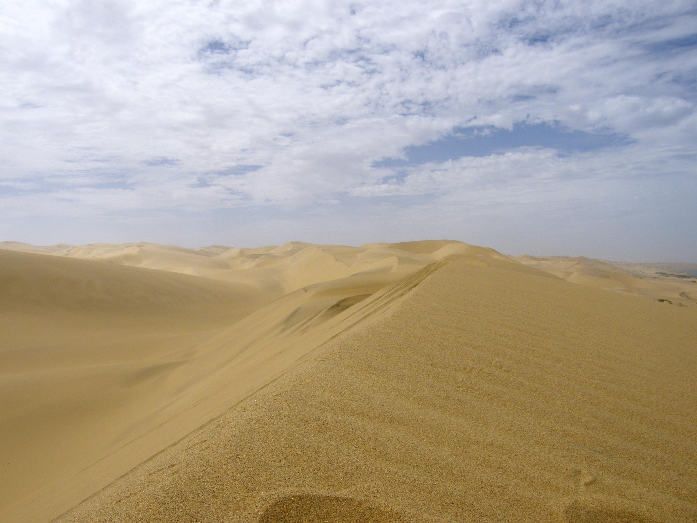 atlantis dunes_green cape town_annika ziehen