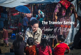 a-long-holiday-traveler-series
