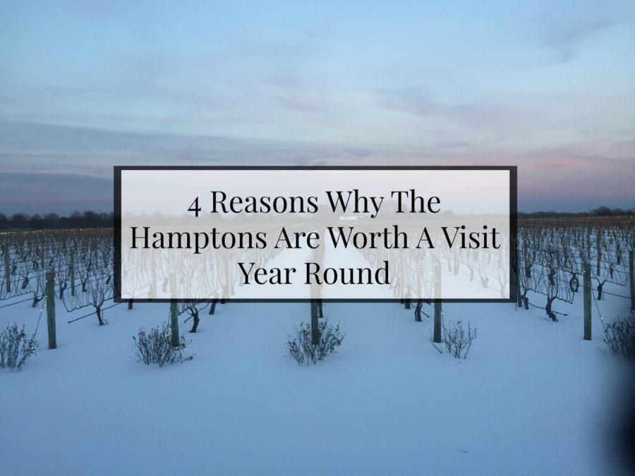 hamptons-vineyard