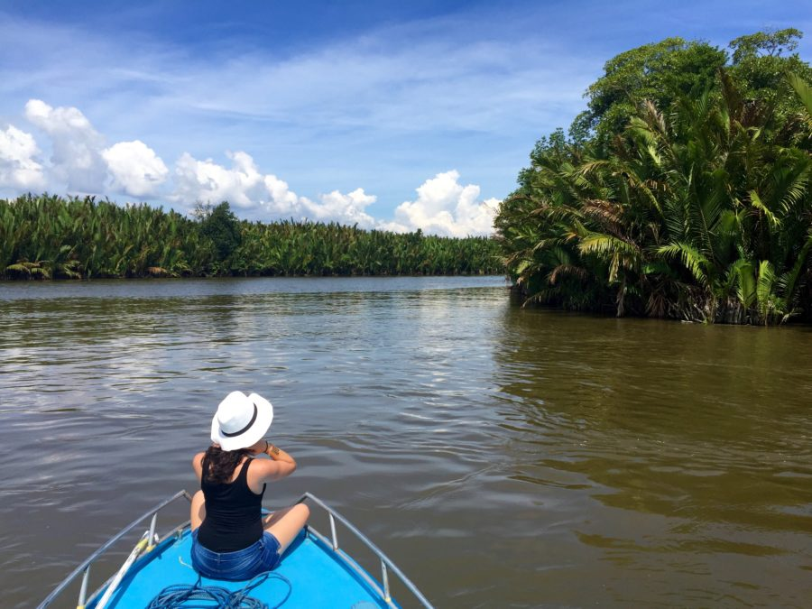 borneo-river-boat