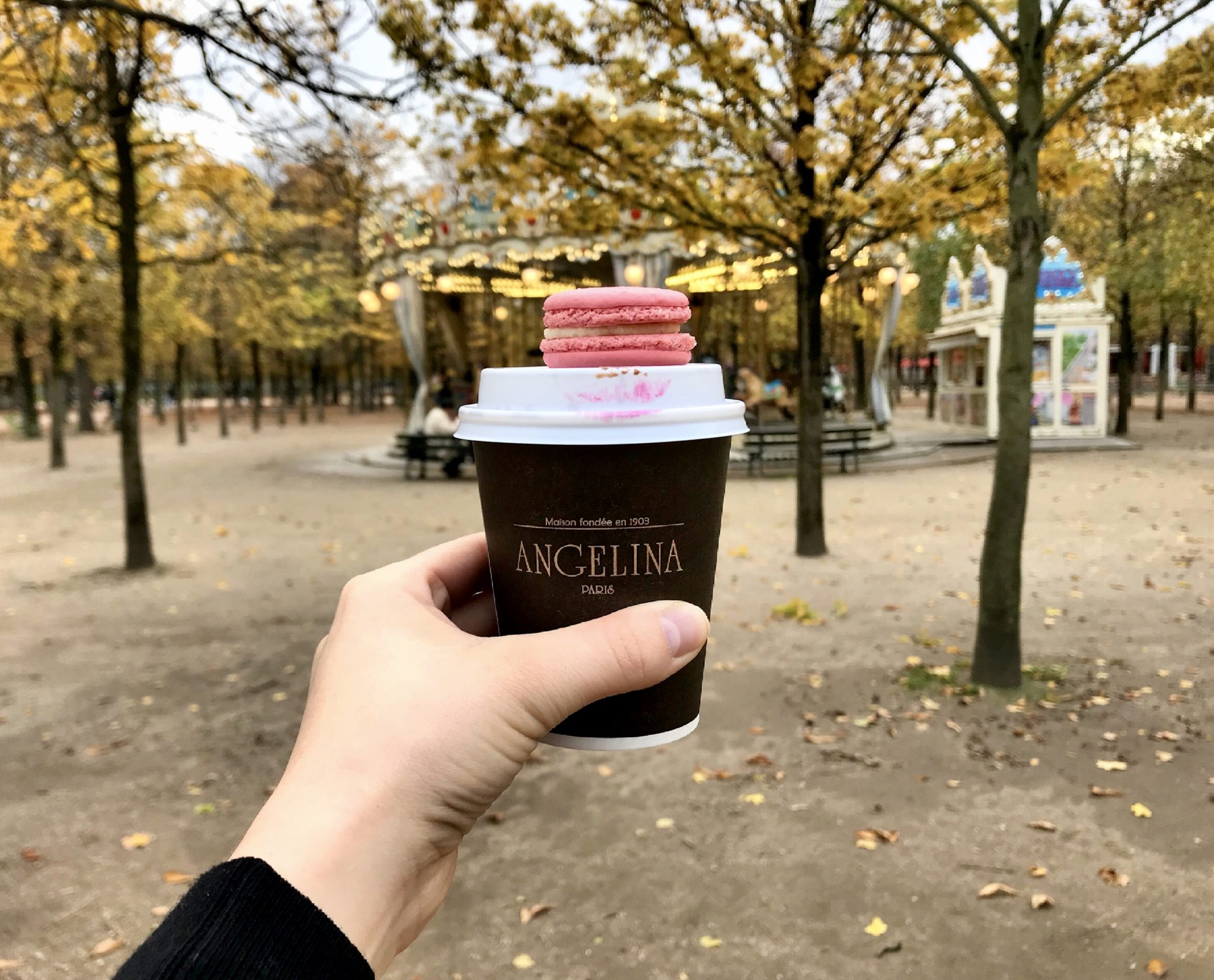 Angelina Cafe by the Tuileries Garden, Paris